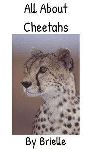report cover on cheetahs