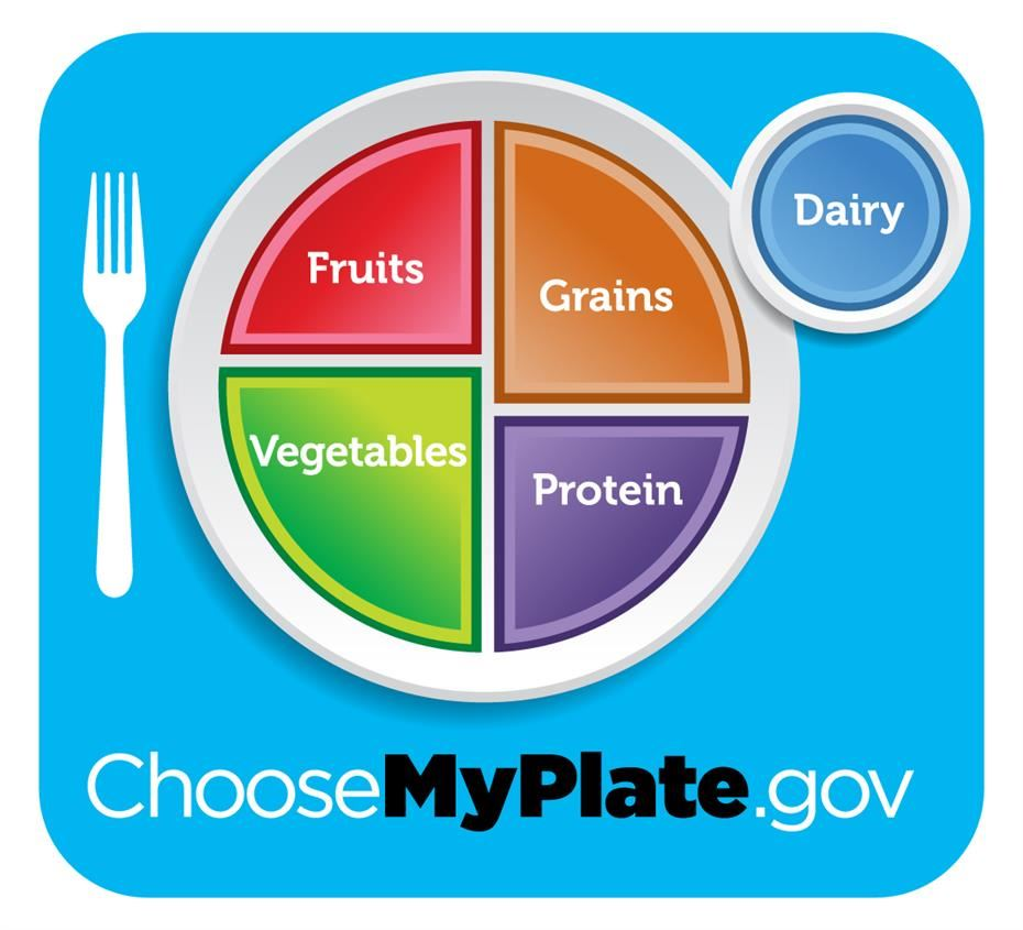 My plate diagram of a healthy meal
